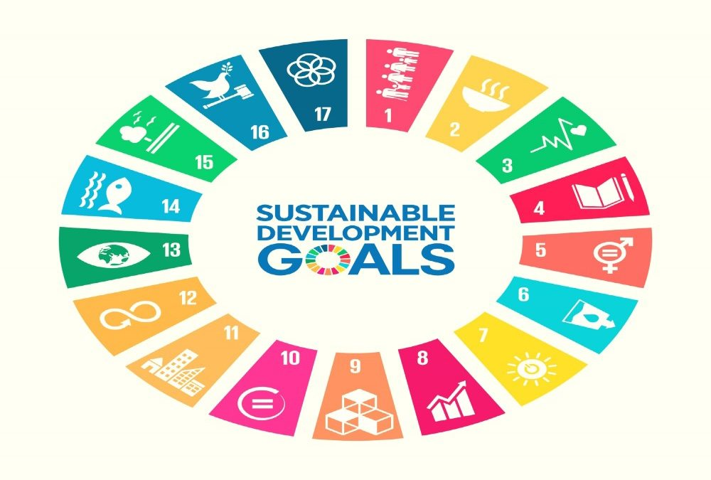 100 ondernemers vragen meer urgentie voor SDG's